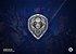 Colecionável Escudo Aliança - World of Warcraft - Imagem 1