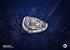 Colecionável Escudo Aliança - World of Warcraft - Imagem 3