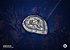 Colecionável Escudo Aliança - World of Warcraft - Imagem 2