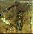 CD - Erisvaldo Borges - Étnico - Imagem 1