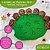 Carimbos de Pegadas - MDF - Animais Selvagens, Domesticados e Brasileiros (MODELOS) - Imagem 4