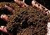 Turfa de Sphagnum 20L - Imagem 1