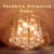 Pendente/Plafon Startec Attractive Âmbar 50cm - Imagem 2