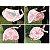 Combo Proteção - Berço Portátil + Mosquiteiro para Carrinho de Bebê - Imagem 3