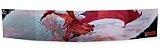 DUNGEONS & DRAGONS: DUNGEON MASTER SCREEN - Imagem 2