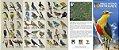Guia de Aves do Parque Nacional de Foz do Iguaçu - Imagem 2