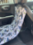 Capa para Banco de Carro Pet Marsala LuckyPet - Imagem 5