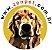 Manta para Cachorro Gato em Cetim Dupla Face Grande Amarela ZenPet - Imagem 4
