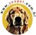 Manta para Cachorro Gato em Cetim Dupla Face Pequena Amarela ZenPet - Imagem 4
