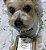 Colar mandala coleção Bob Yorkshire @silvabob220 folheado em ouro 18k - Imagem 1