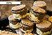 Iceburger de Churros (1 unidade) 80 gramas - Imagem 1