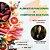 Alimentos Funcionais e Compostos Bioativos - Imagem 1