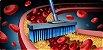 Magnésio Dimalato E Vitamina D3 Articulações Ossos Fortes 4P - Imagem 2
