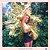 Ombreira Gold - Imagem 2