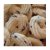 Biscoito Fit Cookies Com Whey Protein - 45g - Wheyviv - Imagem 3