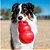 Brinquedo Kong para Cães Bounzer Vermelho - Tam M - Imagem 1