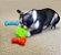 Brinquedo Kong Quest  - Imagem 2