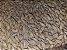 Malte Carapils Weyermann 1 Kg - Imagem 2