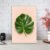 Quadro Decorativo Folha de Planta 20x30 - Imagem 2