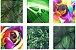 Quadro Decorativo Natureza Folhas Composição 64x37 6pc - Imagem 1