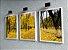 Quadro Decorativo Floresta Amarela - Imagem 5