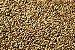 Malte BlackSwaen Biscuit 100g - Imagem 1