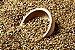Malte GoldSwaen Classic 100g - Imagem 1