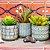 Kit Cachepô Decorativo em Cimento Verde Oliva - Imagem 2