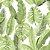 Papel de Parede Folhagem Costela Adão Atemporal - Imagem 1