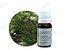 Óleo Essencial Tea Tree GT Austrália 10,1 ml - Imagem 2
