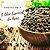 Óleo Essencial de Pimenta Preta - Imagem 2