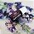 03 UN Óleo Essencial de Lavanda Francesa   Alfazema 10ml 100% Puro Lavandula officinalis HerboMel Natural - Imagem 2
