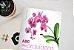 Livro ABC das Orquídeas - Imagem 8
