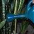 Regador 8 Litros do Jardineiro Amador  - Imagem 2