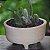 Vaso Pequeno Para Suculentas do Jardineiro Amador - Imagem 2