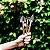Caixa de Mini Ferramentas do Jardineiro Amador - Imagem 4