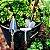 Caixa de Mini Ferramentas do Jardineiro Amador - Imagem 9