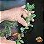 Estilete de Jardinagem do Jardineiro Amador - Imagem 4
