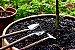 Kit Para Plantar Bonsai - Imagem 3