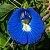 10 Sementes de Ervilha Borboleta Azul - Imagem 1