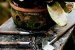 Kit Para Plantar Bromélia - Imagem 2