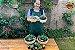 Kit Para Plantar Cactos e Suculentas em Vaso - Imagem 9