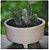 Vaso Para Suculentas do Jardineiro Amador  - Imagem 6