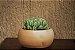 Vaso Redondo para Cactos e Suculentas - Imagem 8