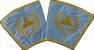 Punhos Primeiro Vigilante - REAA GOB - Imagem 2