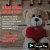 Kit romântico Luminária I Love You + 300 pétalas + 2 balões metálicos - Imagem 2