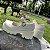 Sapato TRATORADO - Imagem 7