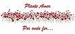 Caneca de Cerâmica Plante Amor 325ml - Imagem 3