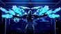 Jogo Novo Midia Fisica Crackdown 3 Lacrado para Xbox One - Imagem 2