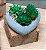 Vaso de Concreto Com Suculenta Coração Cinza Grande 14,5x9cm 4594 - Imagem 1